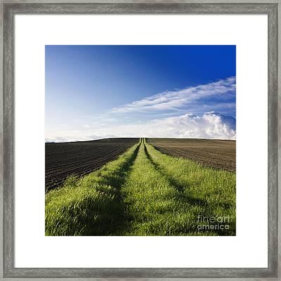 Field Path In Limagne. Auvergne. France. Europe Framed Print by Bernard Jaubert