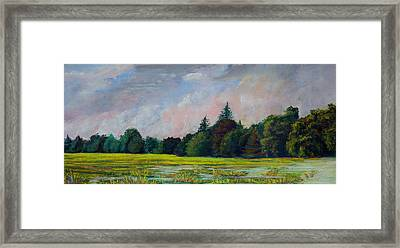 Fields Mid-storm Framed Print by Peter Jackson