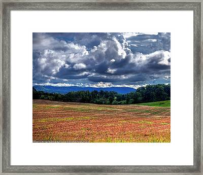 Fields Of Dreams Framed Print