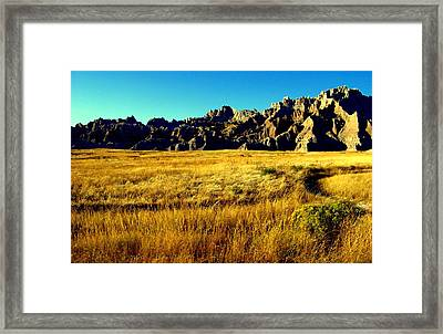 Fields Of Gold Framed Print by Karen Wiles