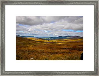 Fields Of Grain Framed Print by Erica McLellan