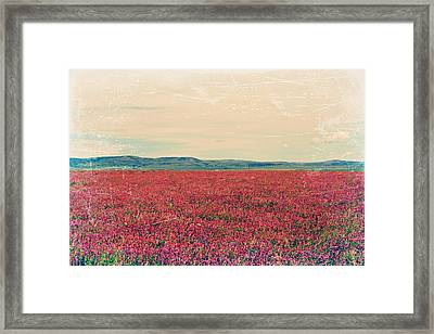 Fields Of Heaven Framed Print by Leanna Lomanski