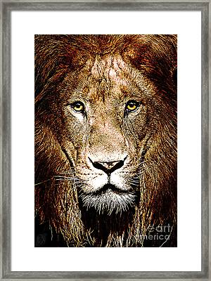 Fiercely Captivating Framed Print by The DigArtisT