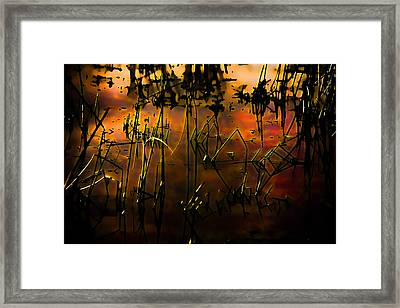 Fiery Abstract Framed Print by Bonnie Bruno
