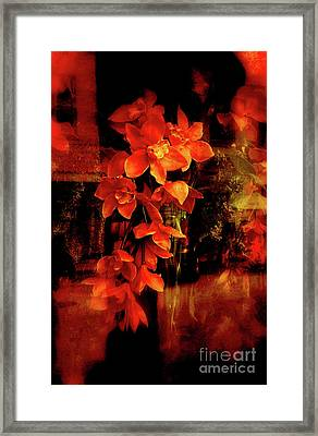 Fiery Ladies Framed Print by Susanne Van Hulst