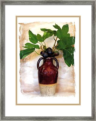 Fig Branch In Europeon Pottery Framed Print