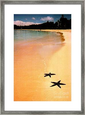 Fiji Beach With Starfish Framed Print by Jerome Stumphauzer