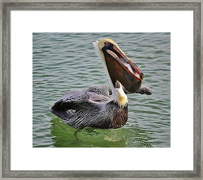 Filled Framed Print by Paulette Thomas