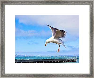 Final Approach - San Francisco Framed Print