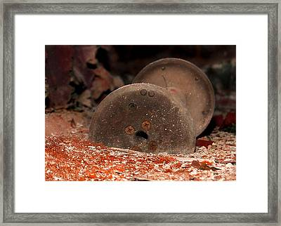Final Resting Place  Framed Print by Tammy Cantrell