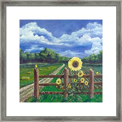 Finch Farm Framed Print by Jim Miller