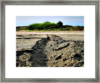 Fingerprint Of Bicycle Framed Print by Jenny Senra Pampin