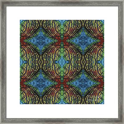 Finz  Framed Print by Sue Duda