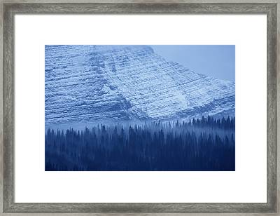 Fir And Spruce Tower Over The Forest Framed Print by Michael Melford