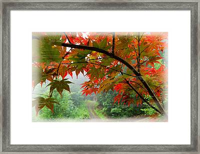 Fire Fog Framed Print by Debra and Dave Vanderlaan
