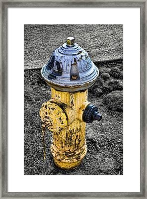 Fire Hydrant Framed Print by Bennie Reynolds