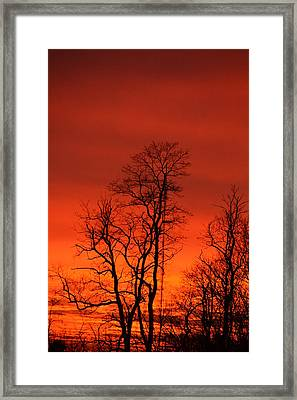 Fire Sky Framed Print by Bonnie Myszka