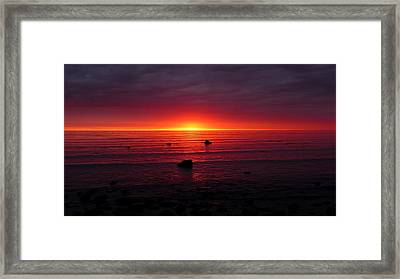 Firewater Framed Print by Mary Greetham