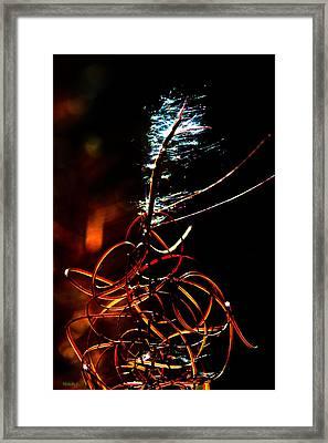 Fireweed Framed Print by Mitch Shindelbower