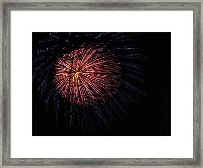 Firework Flower II Framed Print