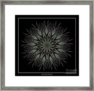 Fireworks Kaleidoscope 4 Framed Print