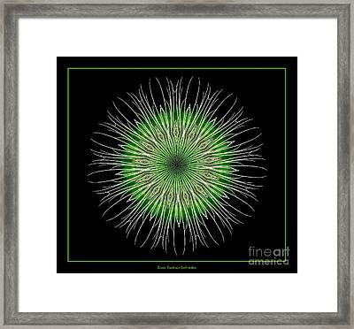 Fireworks Kaleidoscope 5 Framed Print