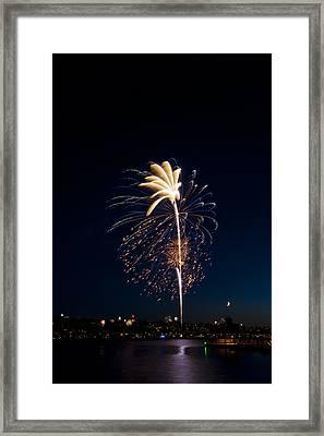 Fireworks Over Lake Washington Framed Print by David Rische