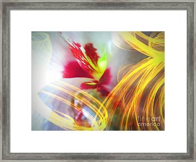 Fireworks Framed Print by Renee Trenholm