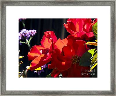 Framed Print featuring the photograph First Blooms by Leslie Hunziker