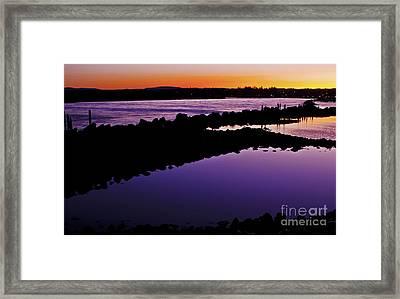 First Blush Framed Print by Rachelle Crockett