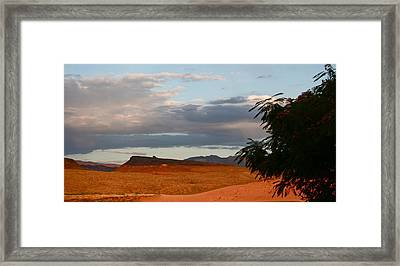 First Desert Light Framed Print