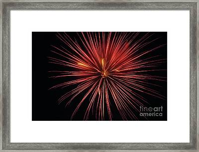 First Glance Framed Print by Clayton Bruster