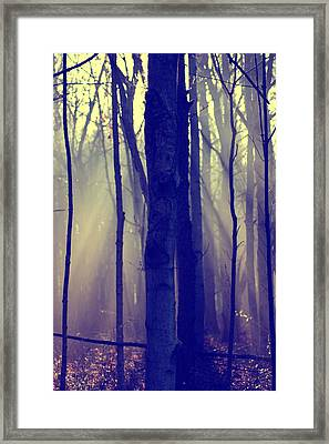 First Light Framed Print by Off The Beaten Path Photography - Andrew Alexander