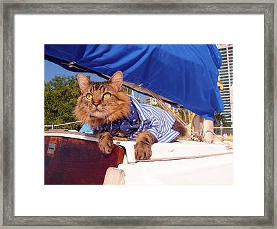 First Mate Framed Print by Joann Biondi