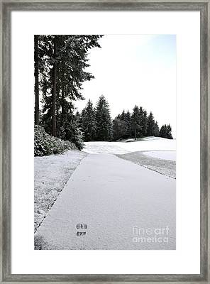 First Snow 10 Framed Print by Tanya  Searcy