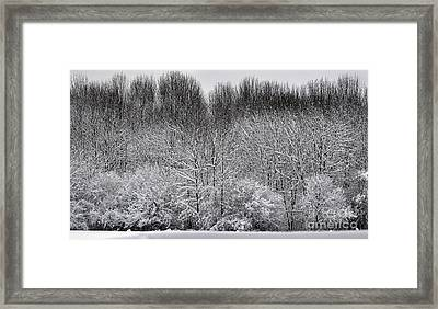 First Snow Framed Print by Diane E Berry