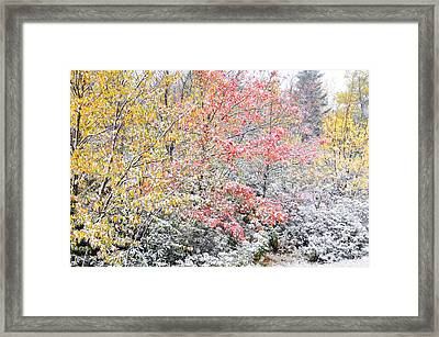 First Snow Highland Scenic Highway Framed Print