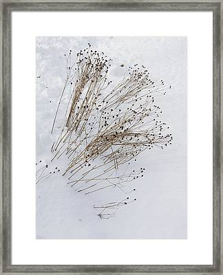 Framed Print featuring the photograph First Snow by Michael Friedman
