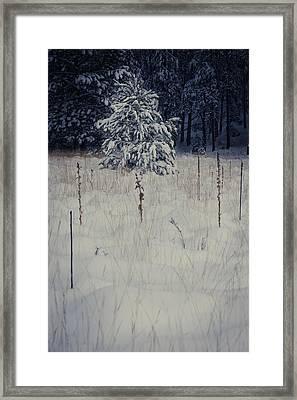 First Snow Framed Print by Scott Sawyer