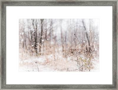 First Snow. Winter Mood Framed Print