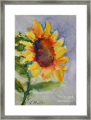 First Sunflower Framed Print by Terri Maddin-Miller