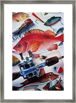 Fish Bookplates And Tackle Framed Print by Garry Gay