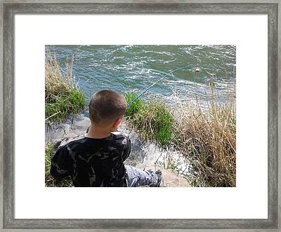 Fish On Framed Print by Anthony Anderson