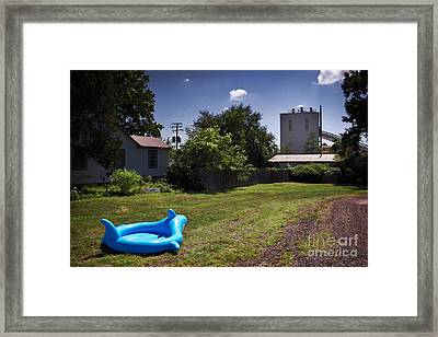 Fish Out Of Water Framed Print by Susan Isakson