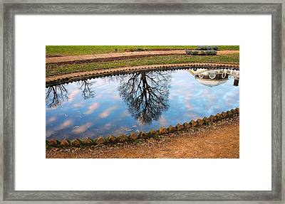 Fish Pond II Framed Print by Steven Ainsworth