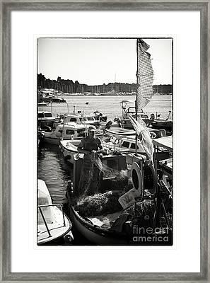 Fisherman Framed Print by Madeline Ellis