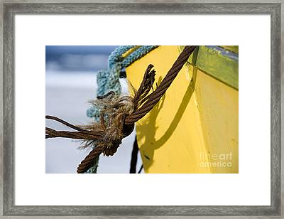 Framed Print featuring the photograph Fishermens' Knot by Agnieszka Kubica