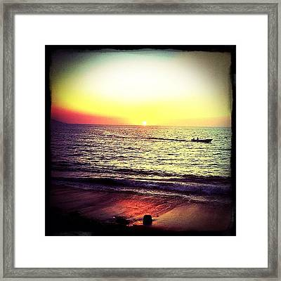Fishing At Sunset (puerto Vallarta) Framed Print by Natasha Marco