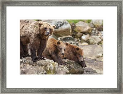 Fishing Is Waiting Framed Print by Tim Grams