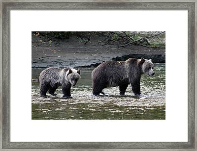 Framed Print featuring the photograph Fishing Lessons by Cathie Douglas